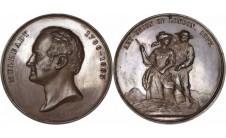 1877 год.  WILLIAM MULREADY: LAUDATORY MEDAL