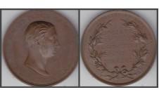 1863 (1895) год. Принц Уэльский. Наградная медаль.