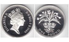 Елизавета II фунт 1989г