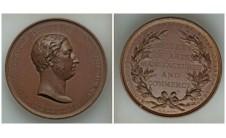 1863 год. Принц Уэльский. Наградная медаль.