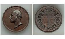 1886 год. Медаль Колониальной и Индийской выставки в Лондоне.