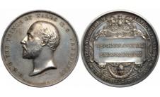 1890 год. Наградная медаль Общества «Город и Гильдии».